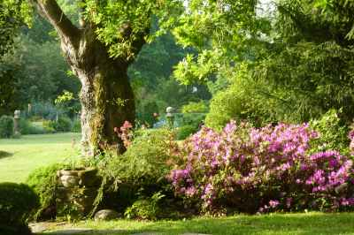 Les Jardins de Kermoureau photo 1