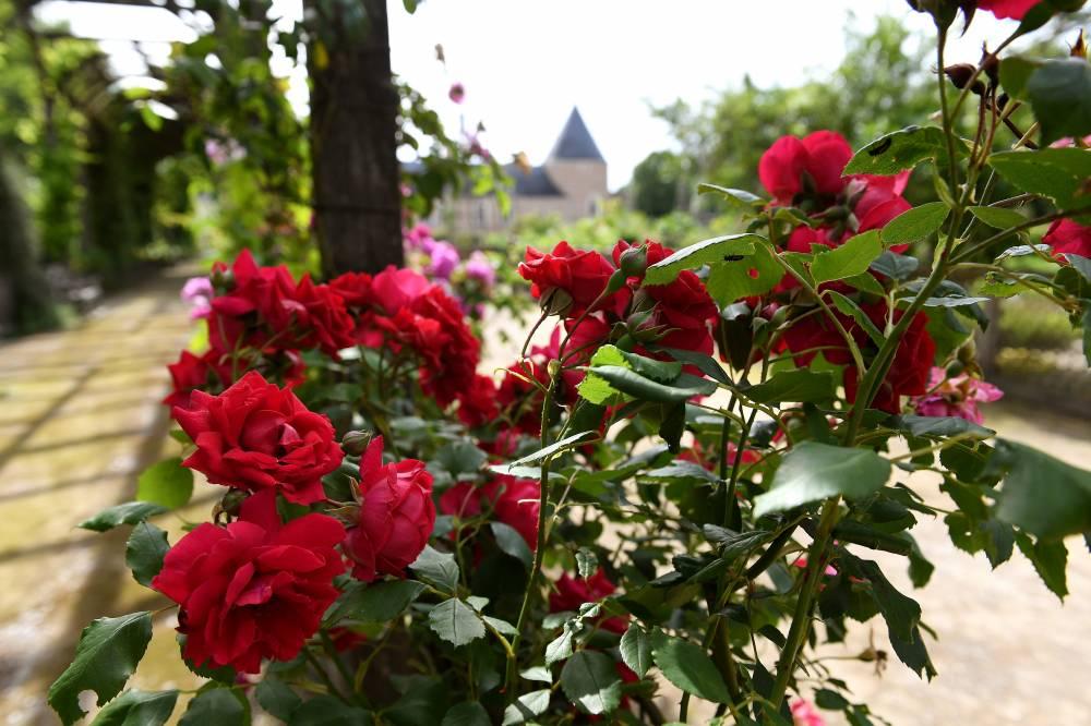 Parc et jardins du ch teau de chamerolles photo 9 for Chilleurs aux bois 45