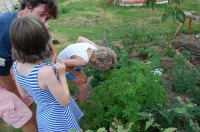 Simply Permaculture photo 2