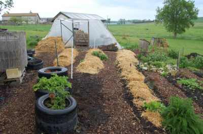 Simply Permaculture photo 3