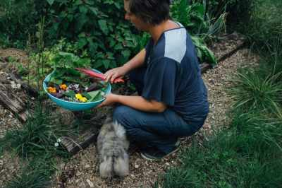 Simply Permaculture photo 6