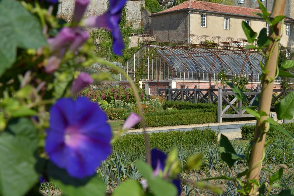 Château Colbert and its Kitchen Garden photo 3