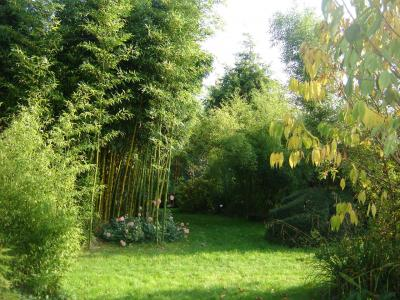 Jardin du Clos de Saint Saturnin photo 0