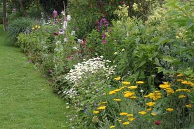 Un jardin pour tous les sens ceffonds 52220 haute for Jardin pour tous