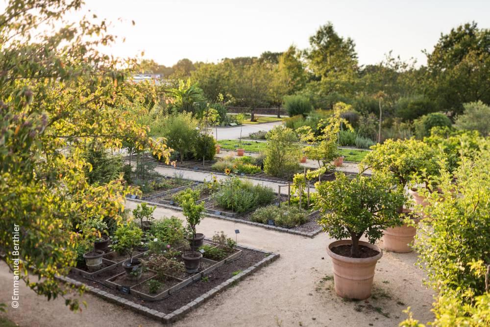 Le jardin botanique yves rocher la gacilly 56200 for Jardin yves rocher