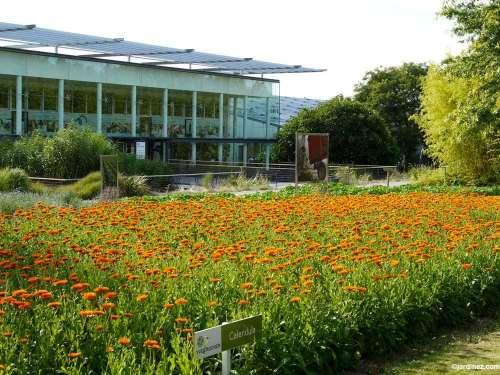 Jardin botanique yves rocher c 39 est un v ritable for Rocher decoratif pour jardin