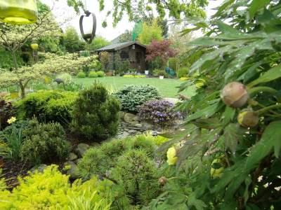 Le jardin le Clos du Lavoir photo 0