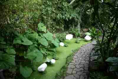 Jardin int rieur ciel ouvert photo 3 - Jardin contemporain athis de l orne nantes ...