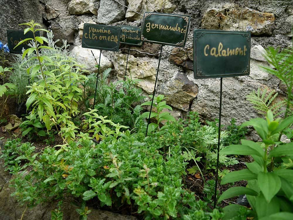 Jardin des croisades photo 6 for Jardin 63