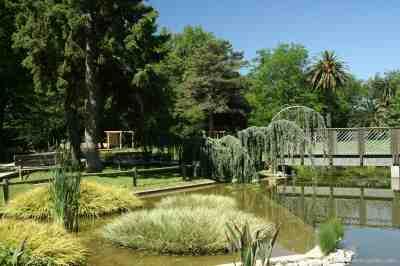Jardin des plantes des capellans photo 0 - Saint cyprien les jardins de neptune ...