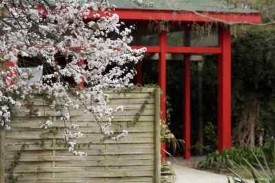 Jardin des plantes des capellans photo 1 - Saint cyprien les jardins de neptune ...