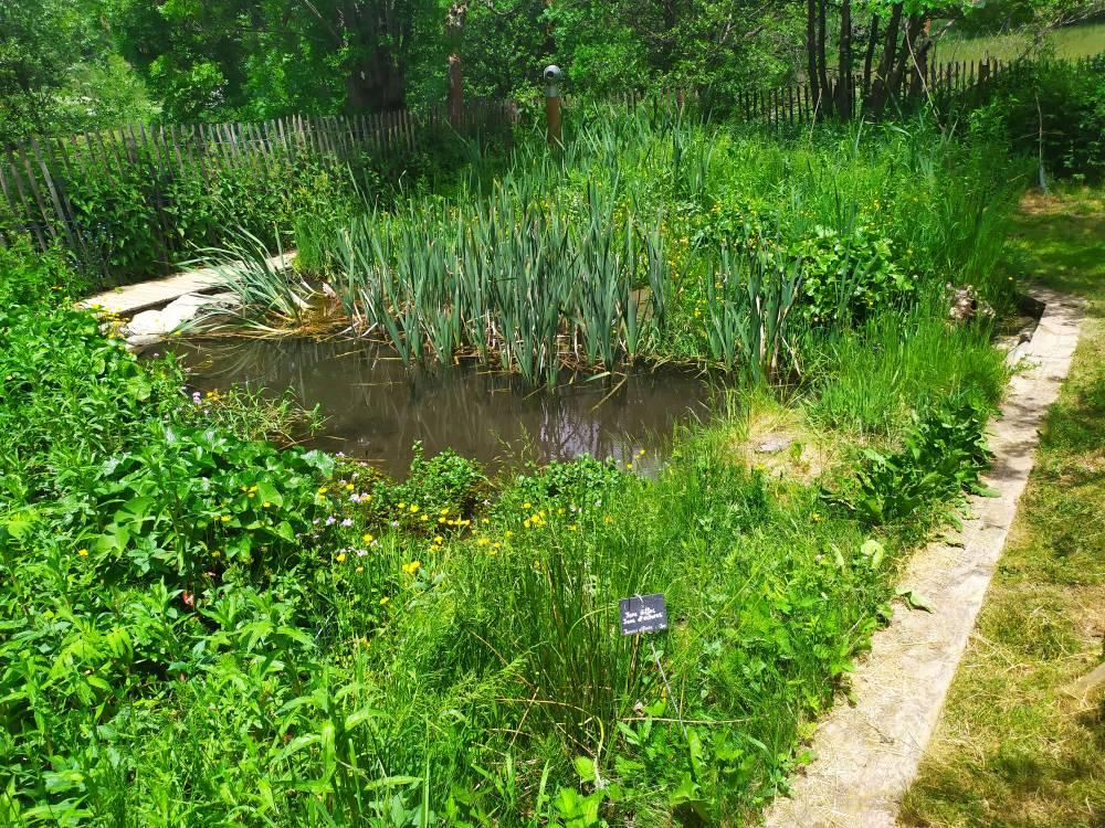 Jardin ethnobotanique de la maison de la vall e photo 2 - Jardin de la vallee ...