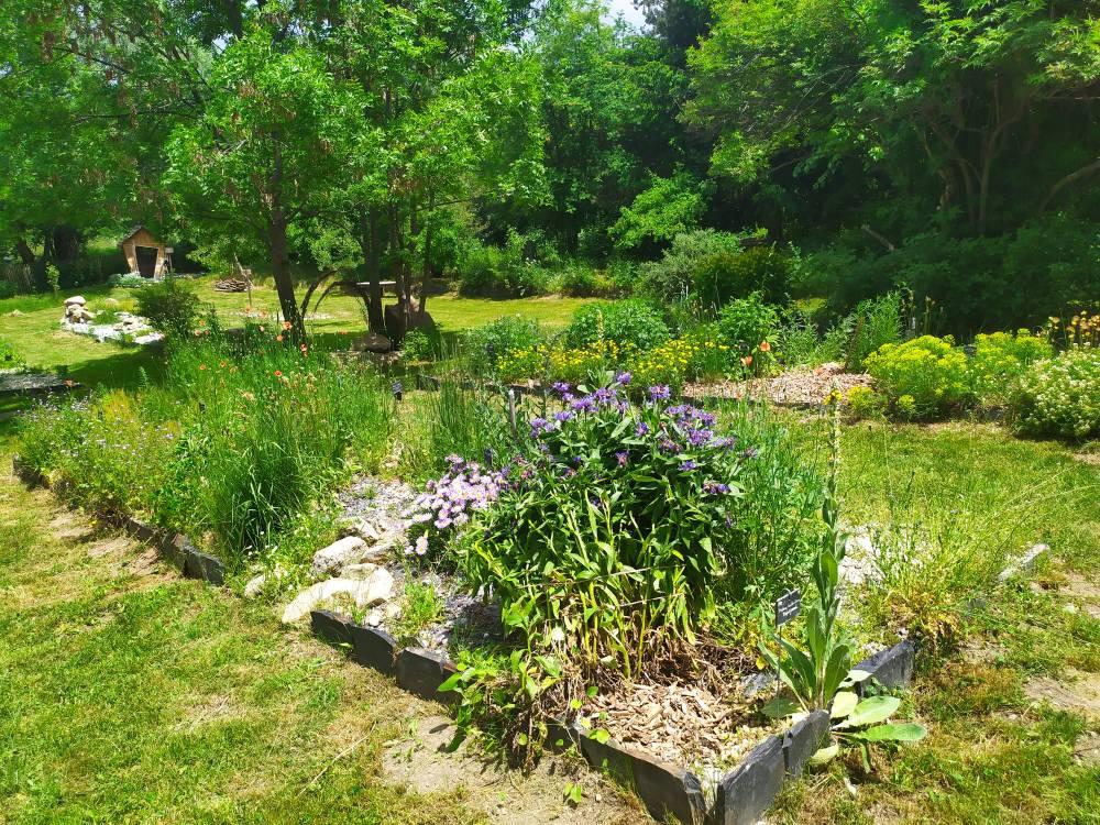 Jardin ethnobotanique de la maison de la vall e photo 3 - Jardin de la vallee ...