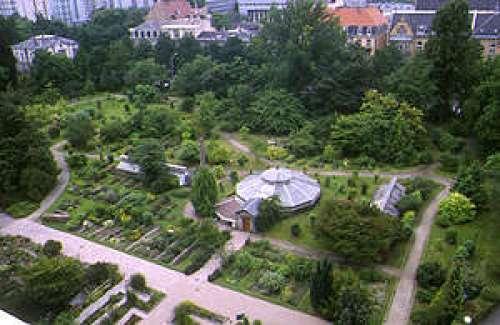 Le jardin botanique de l 39 universit se trouve au c ur de strasbourg il s 39 tend sur une - Jardin botanique de strasbourg ...