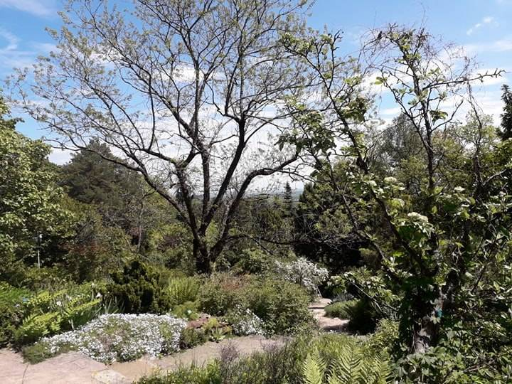 Jardin botanique du col de saverne saverne 67700 bas rhin alsace champagne ardenne - Jardin botanique de saverne ...