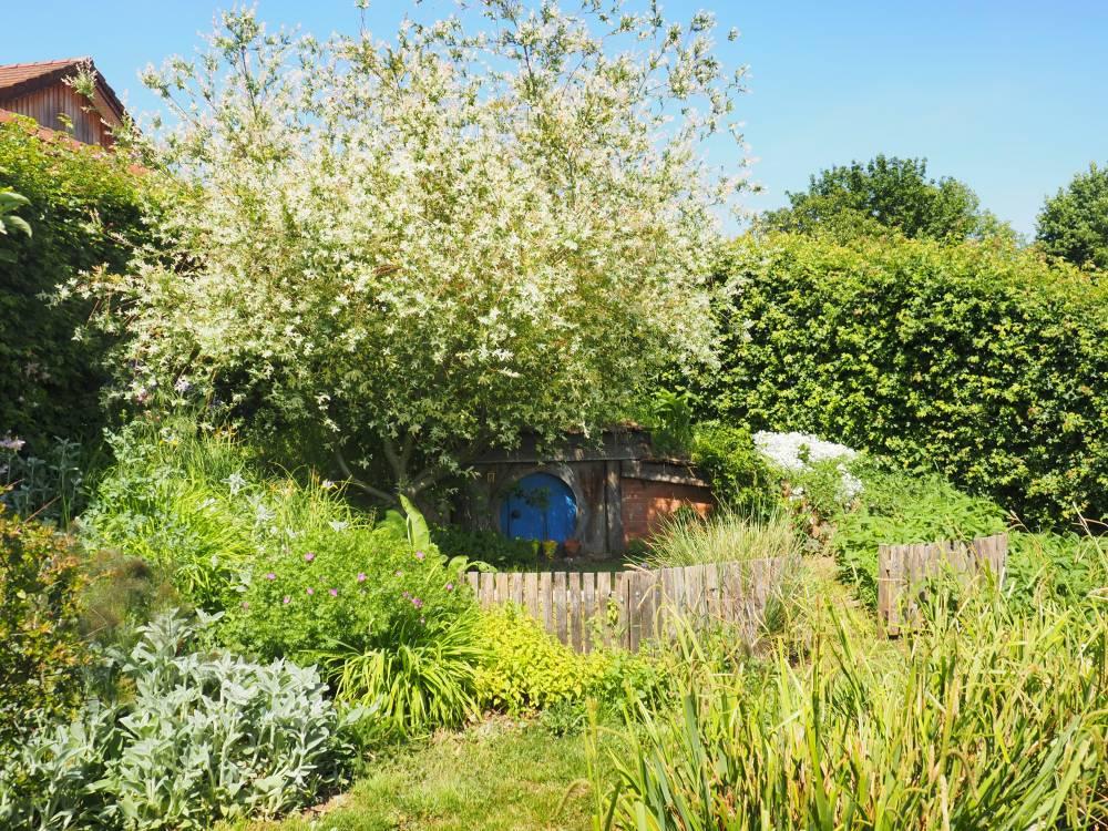 Les jardins du temps photo 5 for Entretien jardin haut rhin