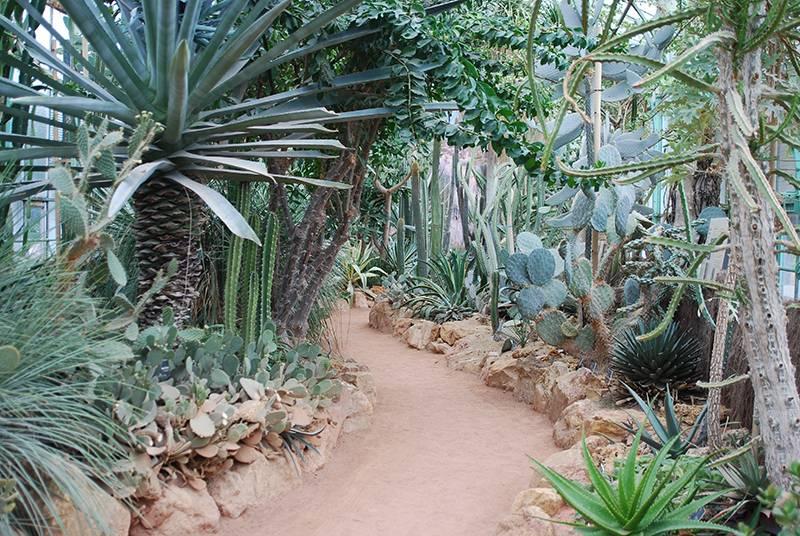 Jardin botanique de lyon photo 3 - Jardin botanique de lyon ...