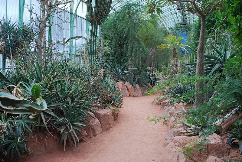 The Botanical Garden Of the City Of Lyon photo 4