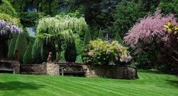 jardin de la bonne maison photo 2. Black Bedroom Furniture Sets. Home Design Ideas