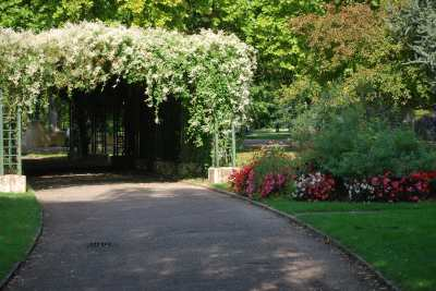 Jardin Anglais photo 1