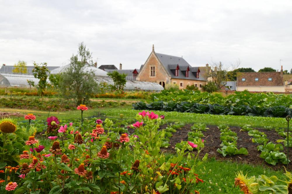 Jardin Potager Intercommunal de Bonn�table