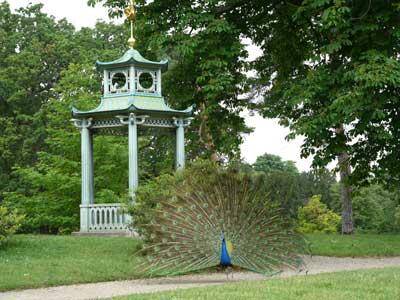 Parc et jardins de bagatelle photo 1 for Bagatelle jardin paris