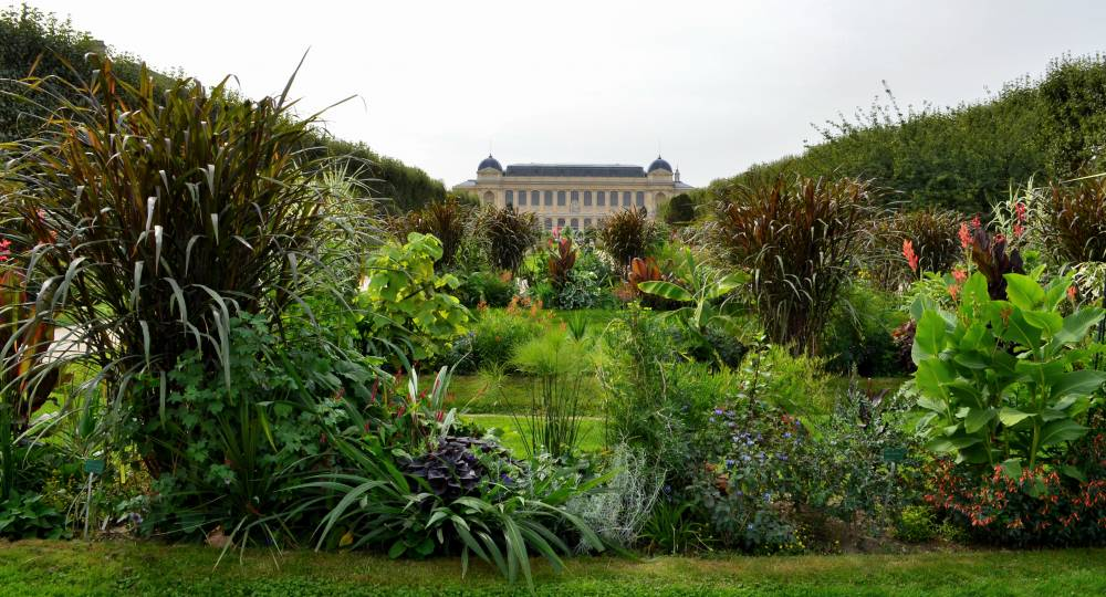 Jardin des Plantes de Paris photo 0