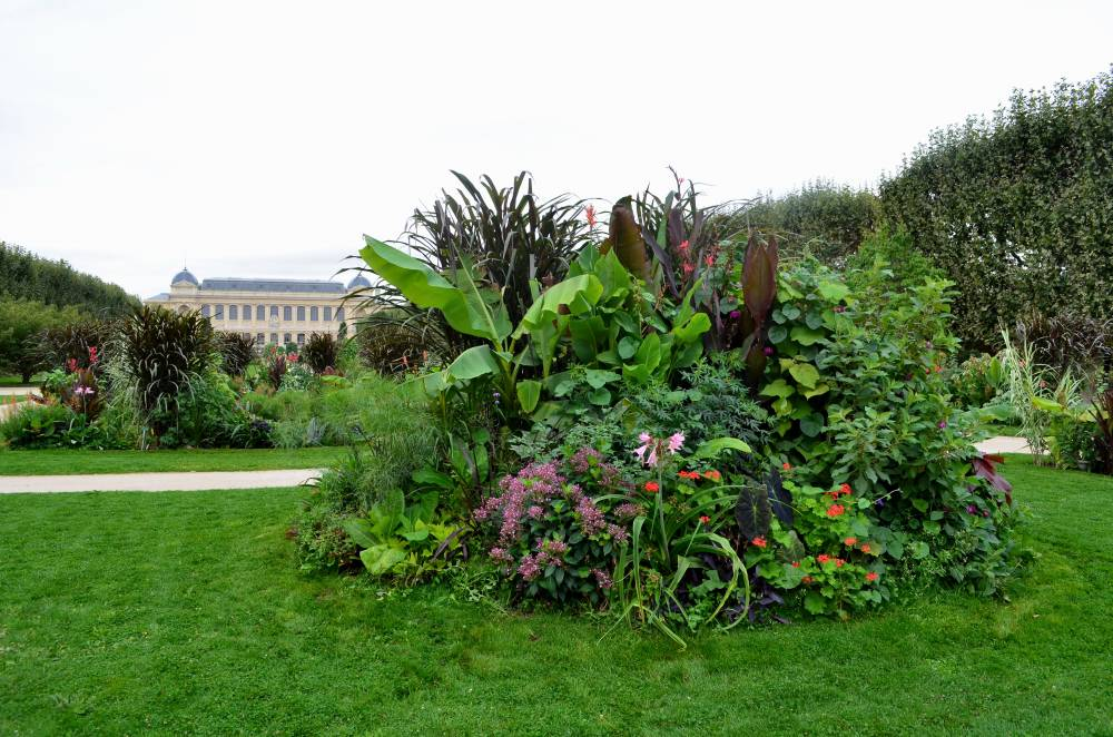 Jardin des Plantes de Paris photo 11