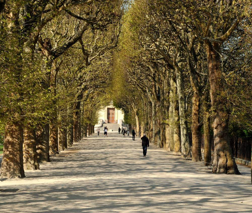 Jardin des Plantes de Paris photo 3