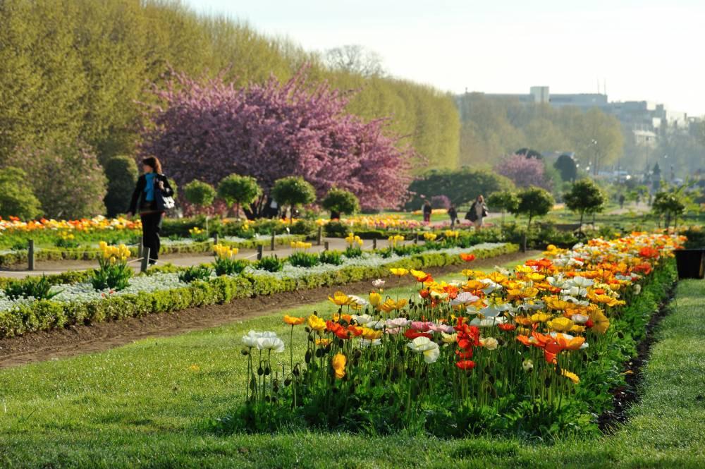 Jardin des plantes de paris photo 9 for Jardin de plantes