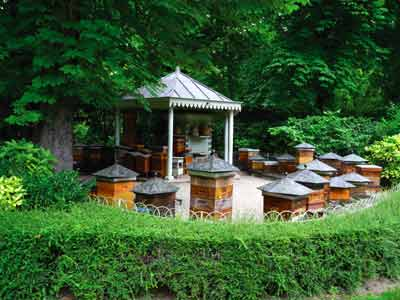 Jardin du luxembourg paris 75006 paris ile de for Piscine jardin du luxembourg