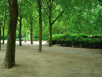 Parc Georges Brassens photo 9