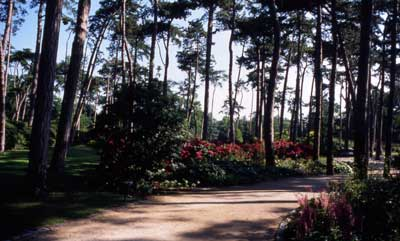 Parque floral de París photo 0