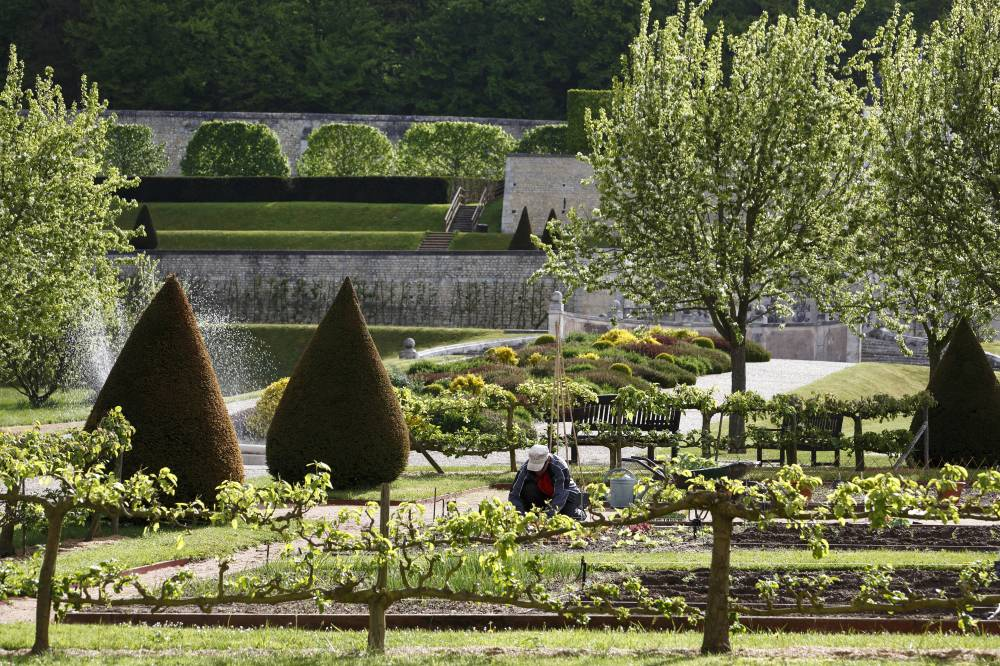 Gardens Of the Abbey Of Saint-Georges de Boscherville photo 10