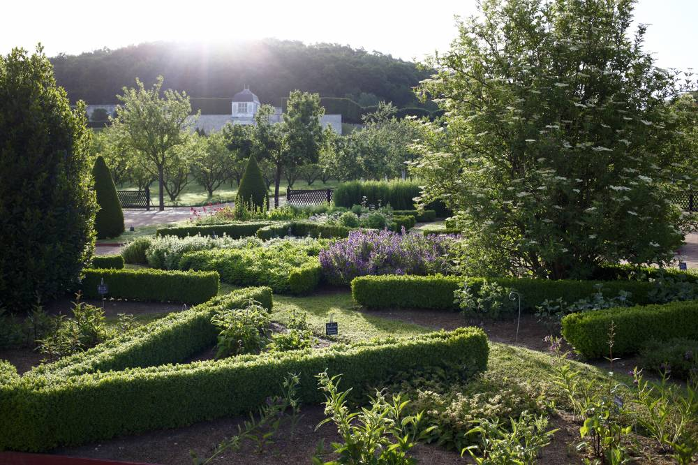 Gardens Of the Abbey Of Saint-Georges de Boscherville photo 3