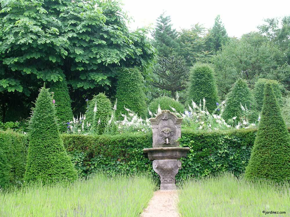 Jardin Agapanthe photo 1
