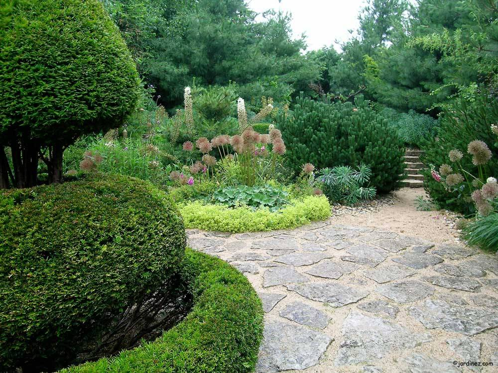 Jardin Agapanthe photo 4