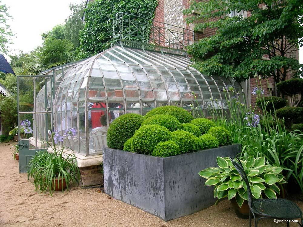 Jardin Agapanthe photo 5