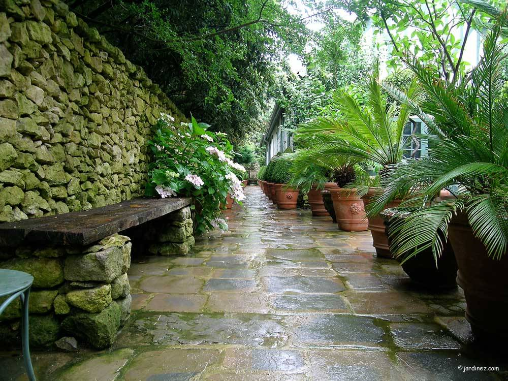 Jardin Agapanthe photo 6