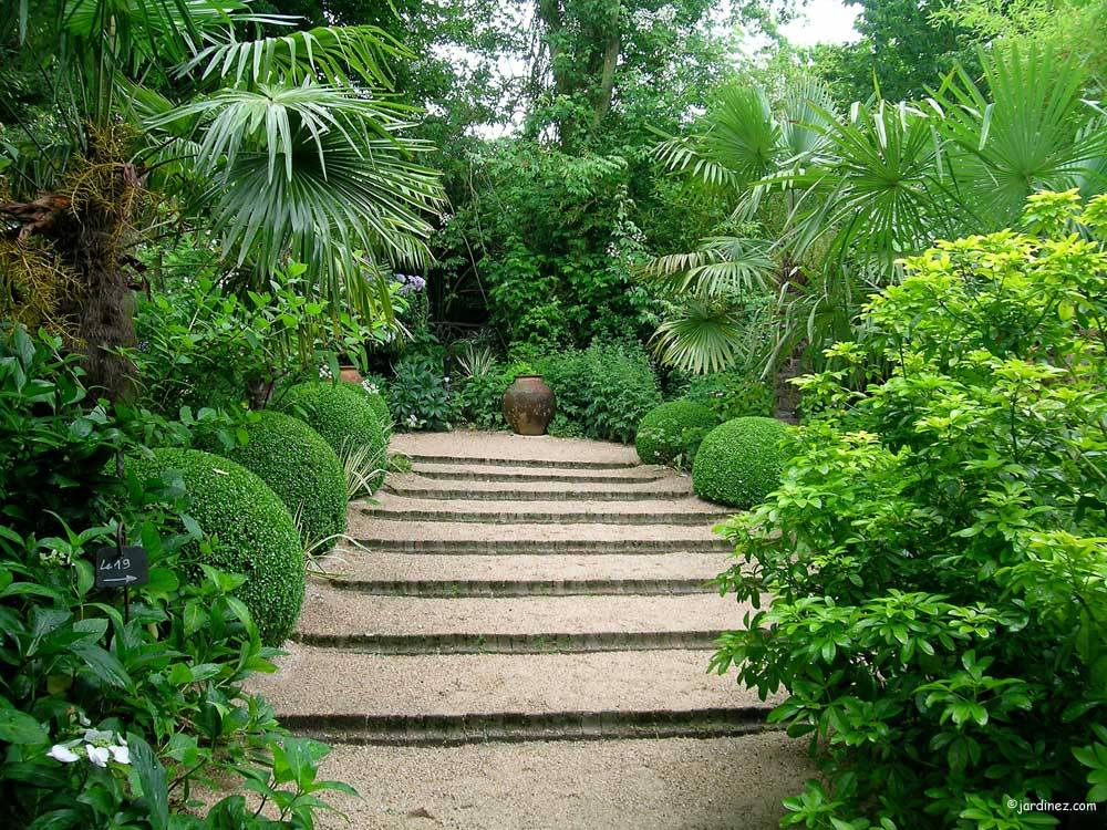 Jardin Agapanthe photo 8