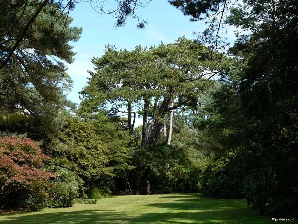 Parc et jardins du bois des moutiers photo 10 for Entreprise parc et jardin