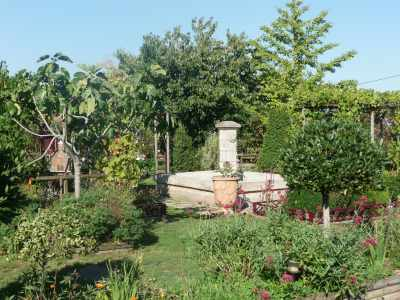 Jardin du Logis de Riparfonds photo 11