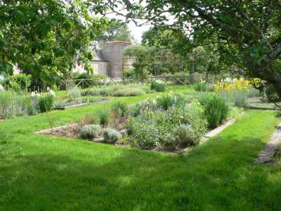 Les jardins fleuris - Page 2 79jardinmedievalduchateaudelaguyonniere_15958