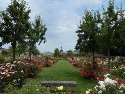 Rose Garden and Park Of the Castle Of Rambures photo 2