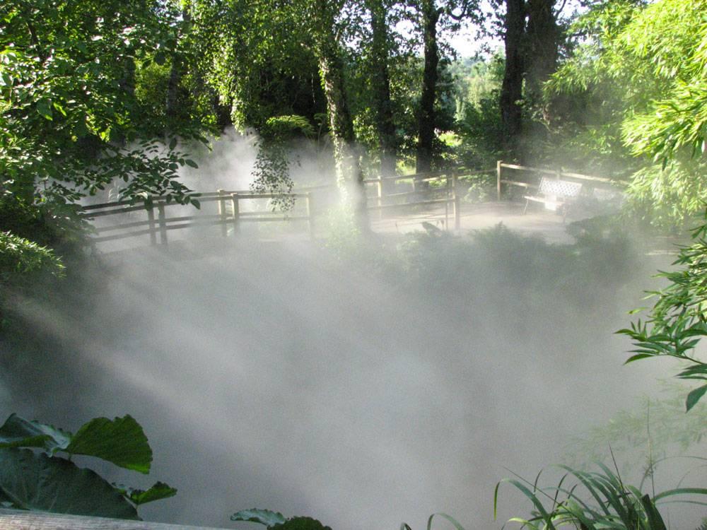 Le jardin des martels photo 11 for Jardin 81