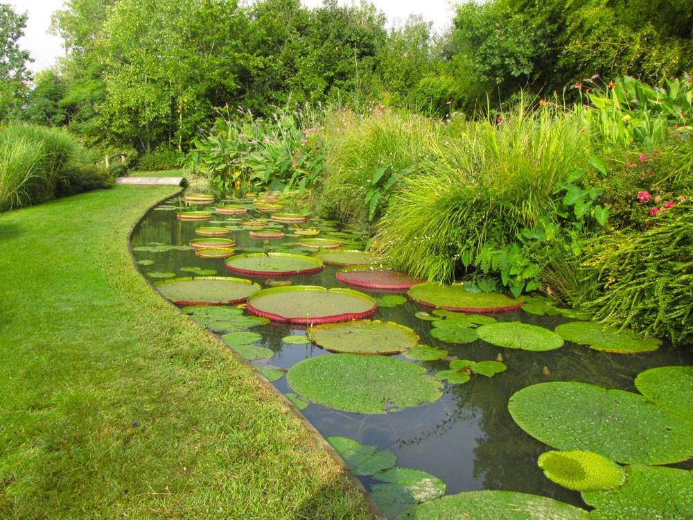 Le jardin des martels photo 8 for Jardin 81