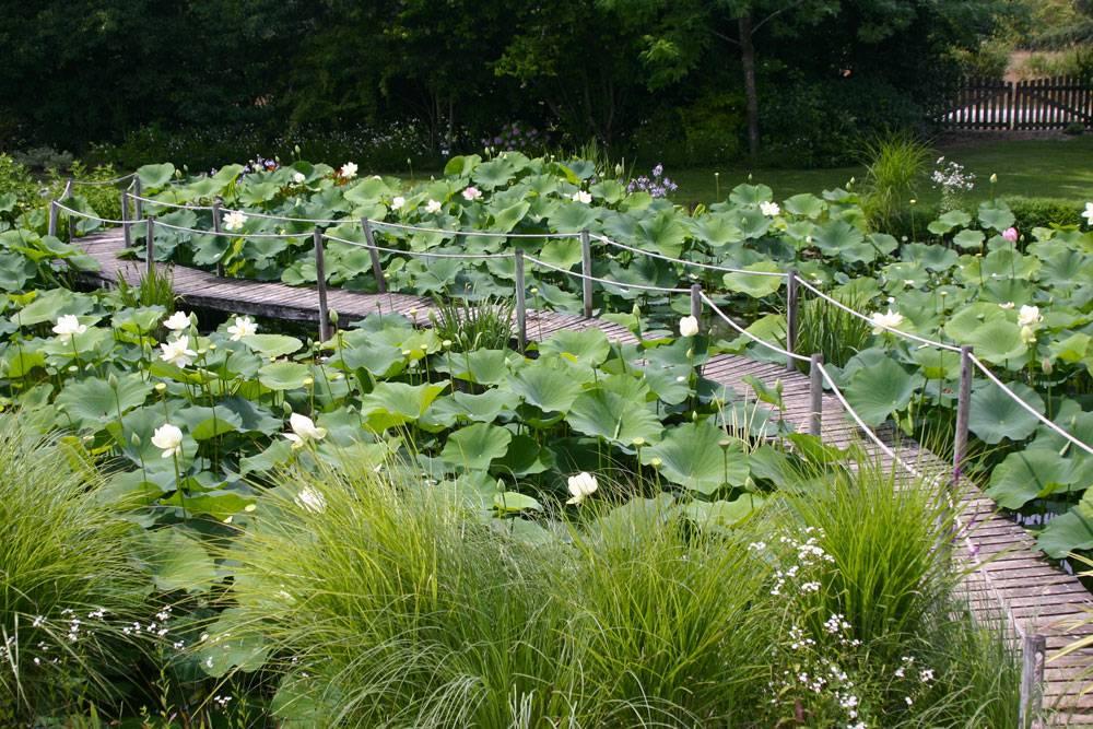 Le jardin des martels photo 6 for Jardin 81