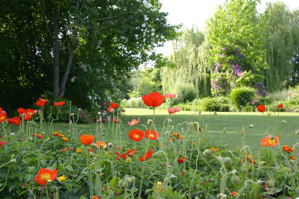 Le Jardin des Martels photo 8