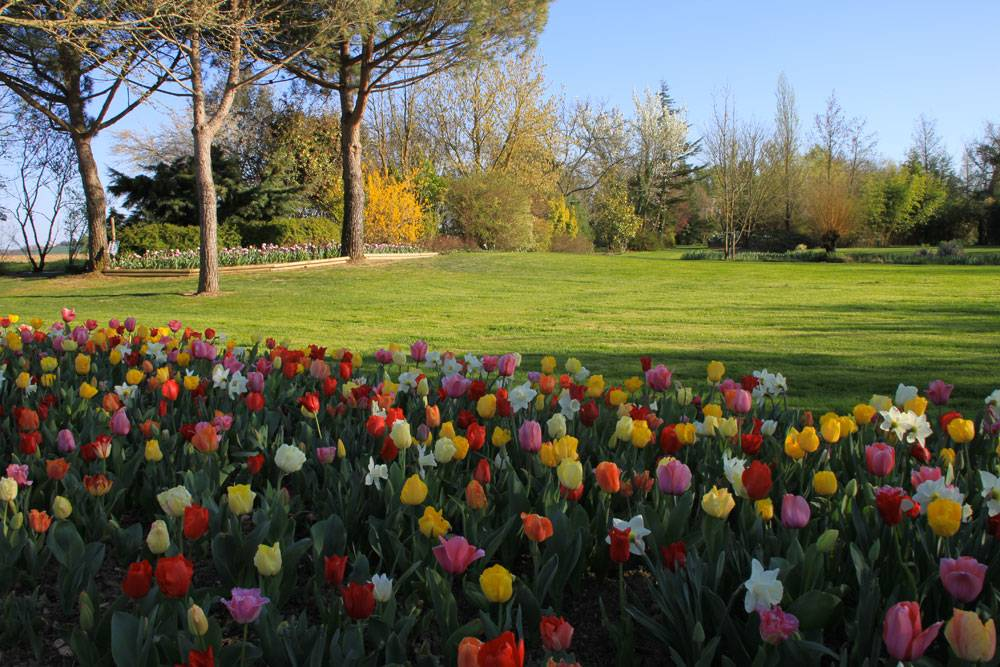 Le Jardin des Martels photo 9