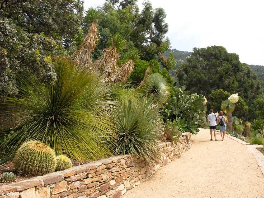Domaine du rayol le jardin des m diterran es photo 1 - Domaine du rayol le jardin des mediterranees ...